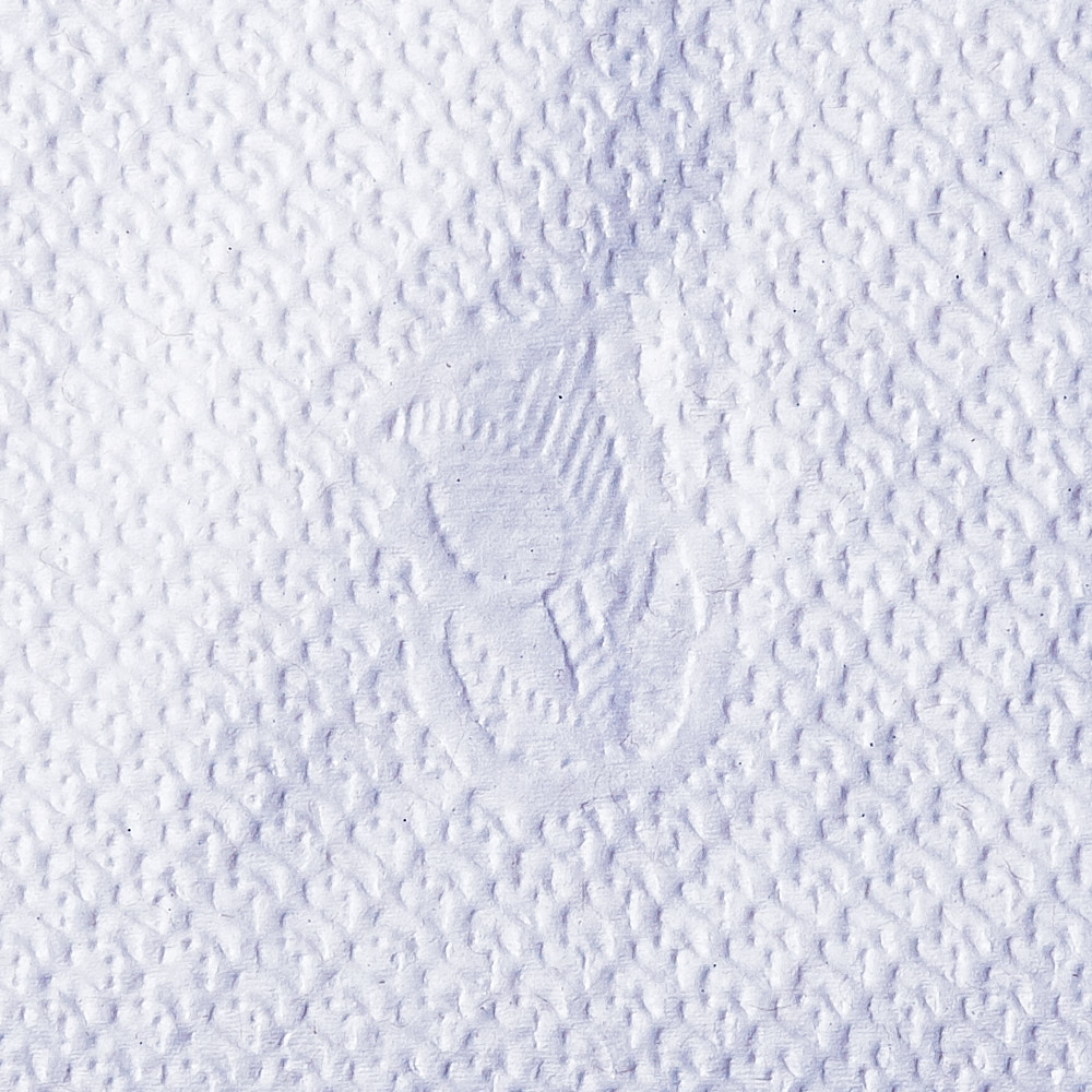 Close-up photograph of paper napkin texture with rose decal